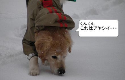 Snow02