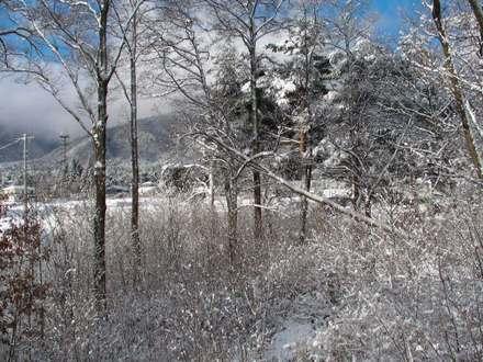 Snow01_2