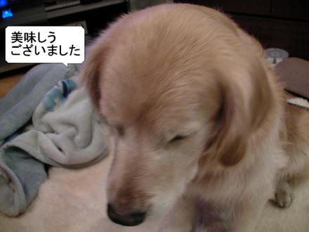 Ichigo06