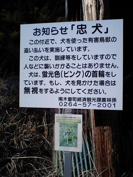 Kakizore02