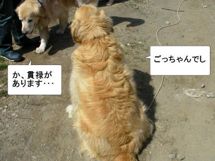 Otomodachi03