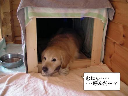House01_2