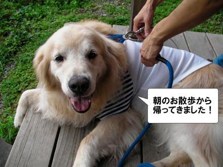 Haircut00_2