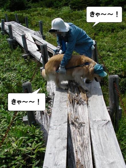 Kiso14_2
