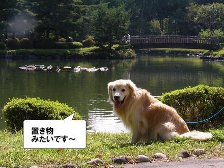 Ooshiba05