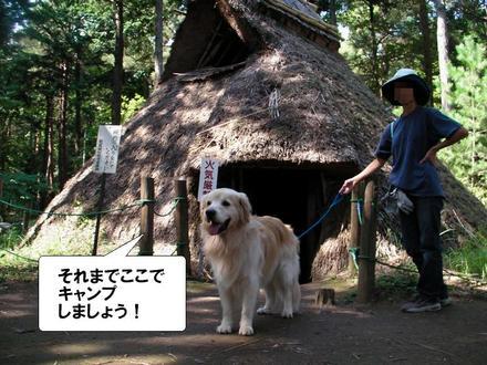 Ooshiba09